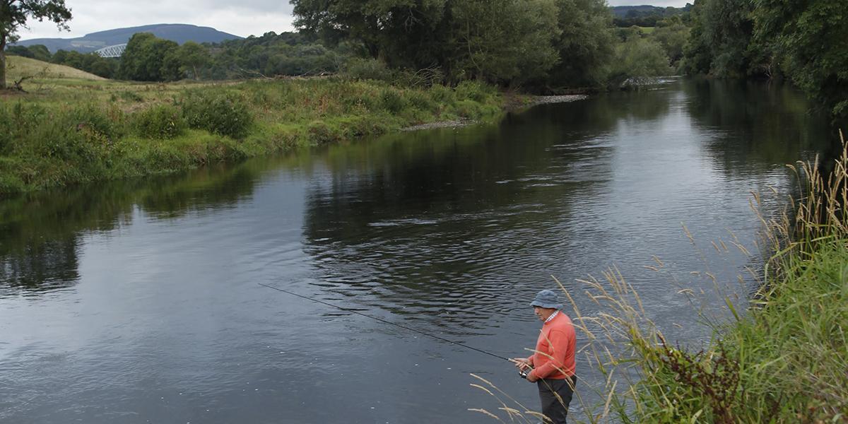 Jerpoint Park Accommodation Fishing Kilkenny